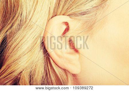 Close up on female ear.