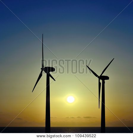 Windmills at sunrise