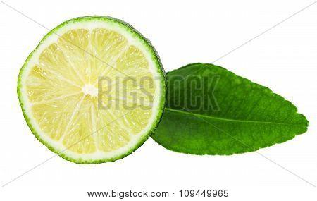Slice Of Fresh Kaffir Lime Fruit With Leaf
