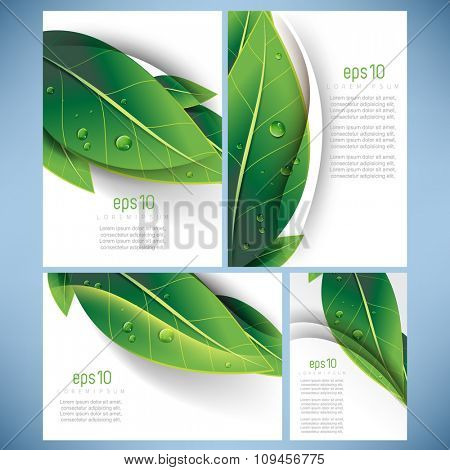 set of four elegant green leaves elements nature ecology business leaflet brochure background design