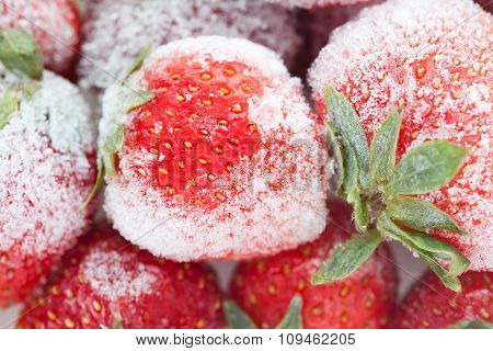 Frozen berries. sweet soft red strawberry fruits with a seed-studded surface.