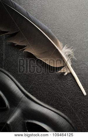 feather and a carnival mask on a textured book cover