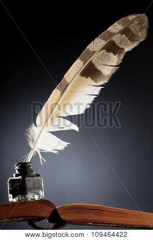 a feather quill in an ink bottle on an open book