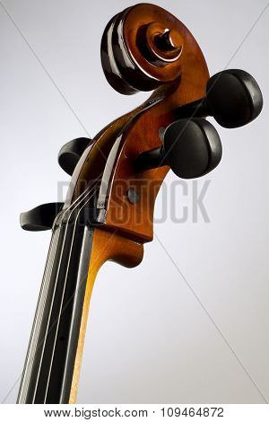 a neck and scroll of the cello