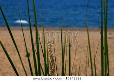 Greek beach on Ionian Sea