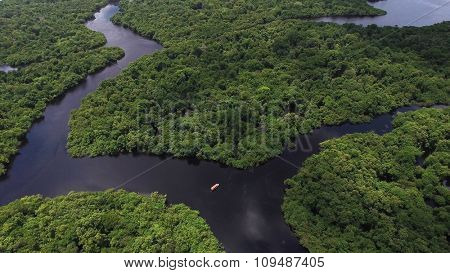 AMAZON, BRAZIL - CIRCA OCTOBER 2015: Aerial Shot of Amazon rainforest in Brazil, South America