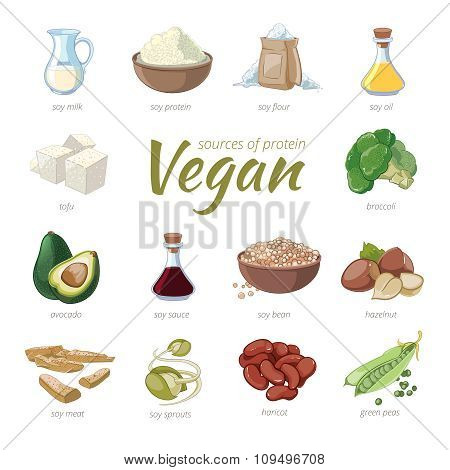 Vegan sources of protein. Plant based protein icons in cartoon style. Peas and haricot, hazelnut and avocado, broccoli and soy, vector illustration poster