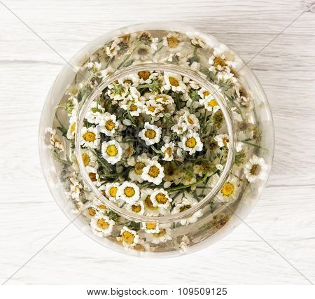 Arangement With Daisy Flowers In The Glass Bowl With Water
