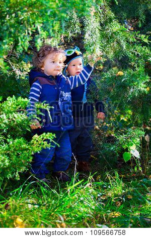 Baby Friends In The Woods