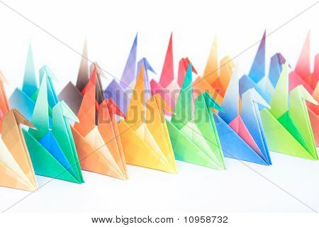 Colourful Origami Birds