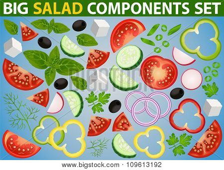 Salad Big Components Set Isolated