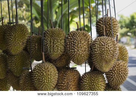 "Durian fruits street market stall Sumatra Indonesia. Durian regarded by many people in southeast Asia as the ""king of fruits"" poster"