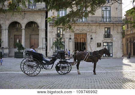 Havana Old City Carriage With Horse.