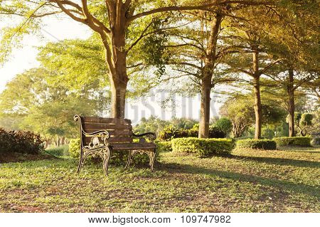 Blank old vintage wooden bench under tree shade at public park with nature background and evening sunlight with lonely feeling or waiting and memory concept poster
