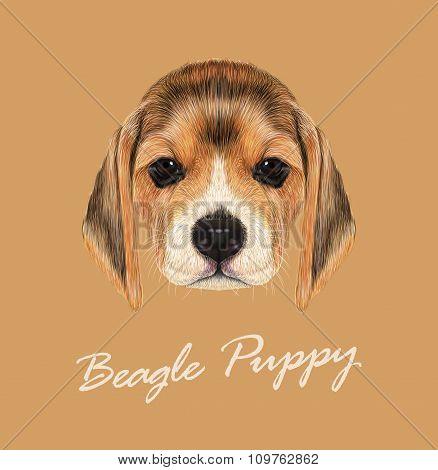 Vector Illustrated Portrait of Beagle Dog