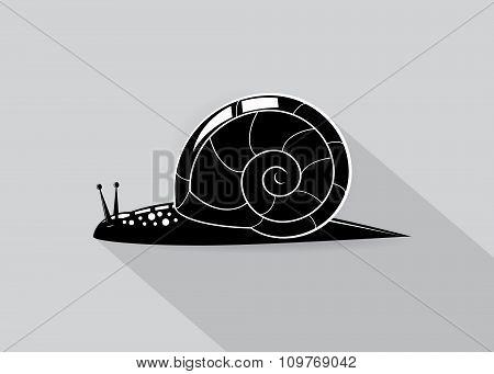 icon snail .