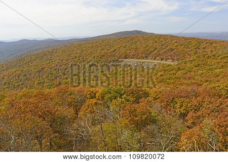 Fall Colors On A Mountain Parkway