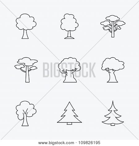 Pine tree, maple and oak icons. Christmas tree.