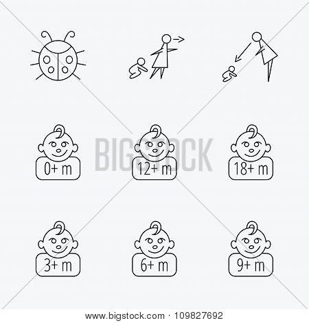 Infant child, ladybug and toddler baby icons.