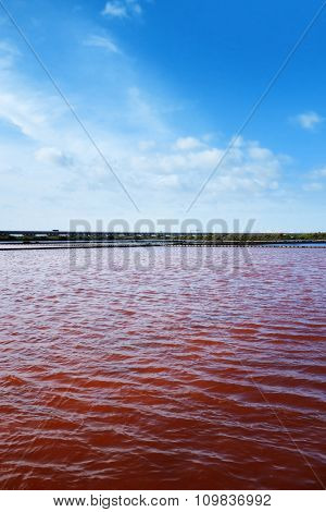 View of red water in a micro algae nursery of a large salina