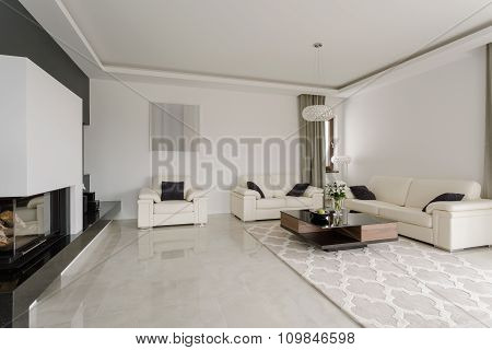 Spacious Snobbish Living Room