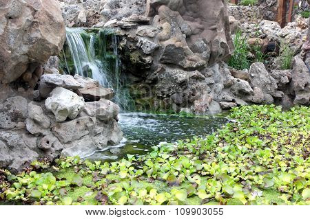 Autumn pond. Plants And Man-made Waterfall In The Pond