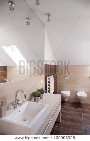Beige And Brown Toilet Design