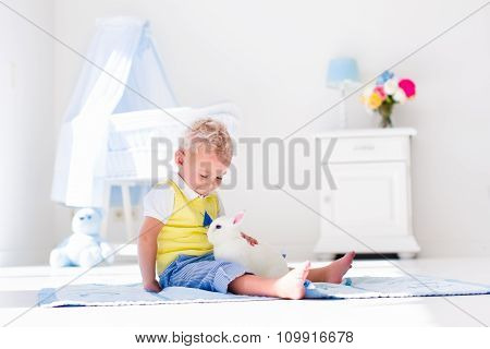 Little Boy Playing With Rabbit Pet