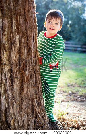 Cute little boy in Christmas clothes standing by a tree