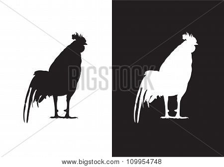 Cock, chicken, rooster - silhouette vector- Stock Illustration