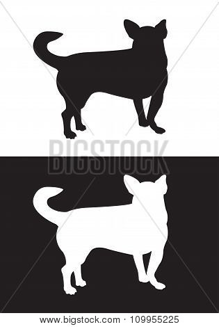 Chihuahua dog breed - silhouette vector- Stock Illustration