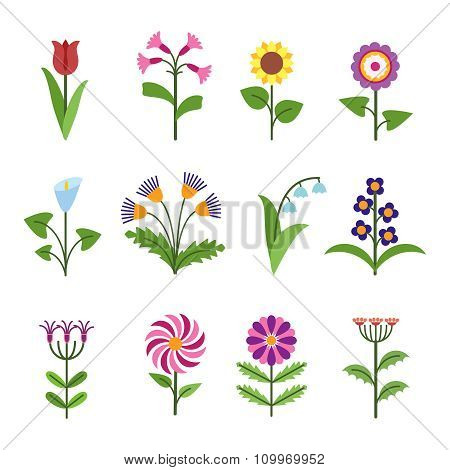 Stylized minimalistic flowers. Plant floral, nature tulip, botanical design blossom, vector illustration poster
