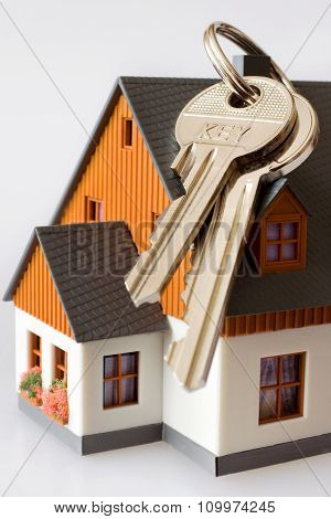 House and bunch of keys on white background