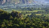 View across the Vinales Valley in Cuba. Morning twilight and fog.Fog at dawn in the Valley of Vinales in Pinar del Rio famous for tobacco plantations in Cuba world heritage site of Unesco poster
