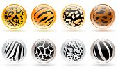 set of different glossy balls with wild animals skin patterns poster