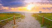 Path on the sand going to the ocean in Miami Beach Florida at sunrise or sunset beautiful nature landscape retro instagram filter for vintage looks poster