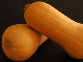 Two Butternut Squash Pumpkins