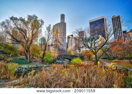The pond in Central park in New York City at autumn day, USA