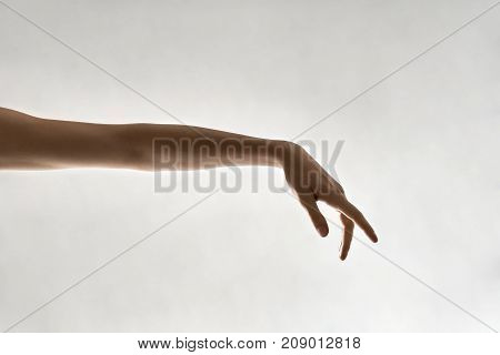 Beautiful female arm on the light background in the studio. Closeup. Horizontal.