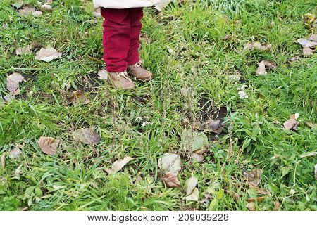 Little girl's legs in red velvet jeans and brown boots standing on a lawn with green grass and dried leaves.