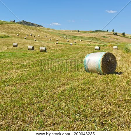 Landscape of Sicily with Many Hay Bales