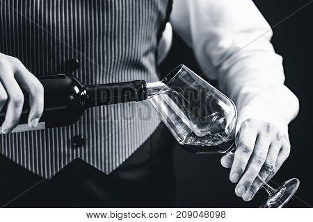 Sommelier Tasting Wine, Black And White Image