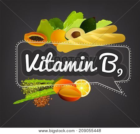 Vitamin B9 banner. Beautiful vector illustration with caption lettering and top foods highest in vitamin B9. Useful for leaflet, brochure or poster design as a header or other graphic element.