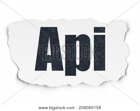 Database concept: Painted black text Api on Torn Paper background with  Tag Cloud