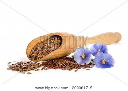 Flax Seeds In The Wooden Scoop And  Beauty Flowers Isolated On White Background.
