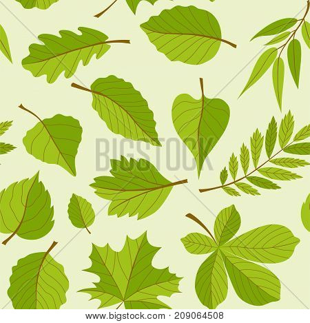 Leaves pattern - seamless modern material design background. Different trees: oak, rowan, maple, chestnut, birch. Herbarium concept. Template for wrapping paper, fabric, cover, textile, business cards