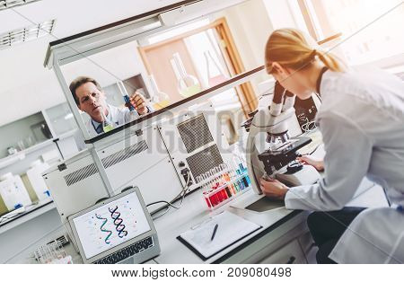 Laboratory Scientists Working