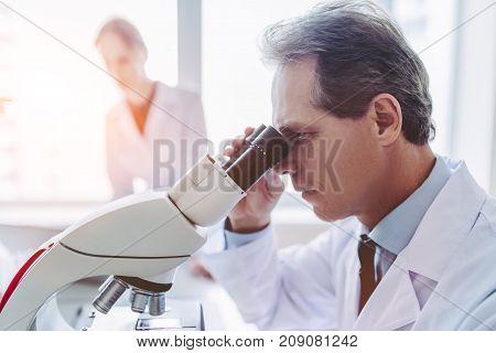 Laboratory Scientists Working