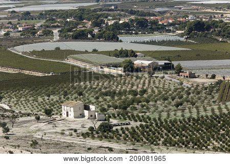 Views Of The Countryside Of Monforte, Aspe And Novelda