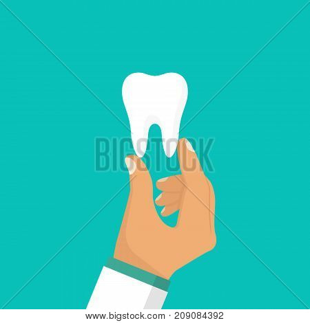Dentist holds a tooth in hands. Healthy white tooth. Vector illustration flat design. Teeth isolated. Medical background. Promotion of dental clinic whitening, prosthetics.